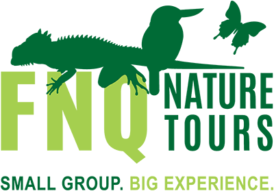 FNQ Nature Tours transparent logo - Australian Wildlife Journeys
