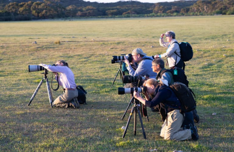 Photographer group on Kangaroo Island