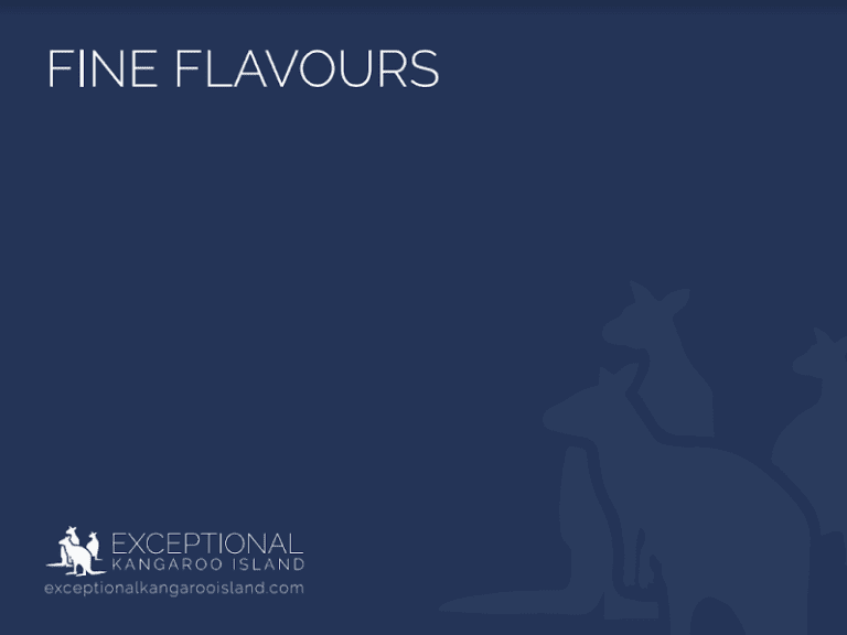Exceptional Kangaroo Island Tours - Fine Flavours Food & Wine Tour brochure