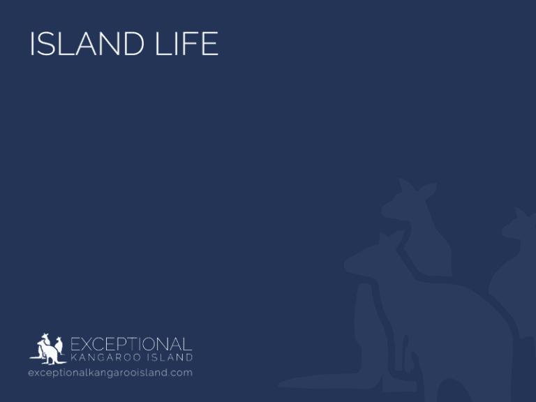 Exceptional Kangaroo Island Tours - Island Life Wildlife and Landscape Tour brochure